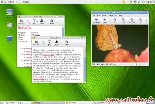 L'évolution de l'interface de Gnome et KDE - Gnome 2.20