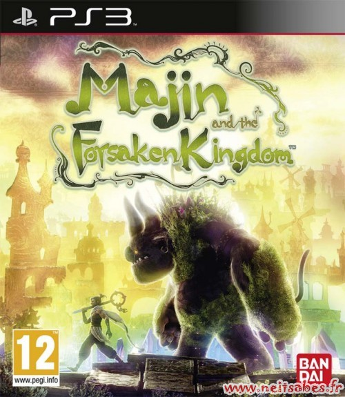 Commande - Majin And The Forzaken Kingdom (PS3)