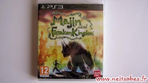 C'est arrivé ! - Majin And The Forsaken Kindom (PS3)