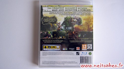 C'est arrivé ! - Majin And The Forsaken Kindom (PS3)