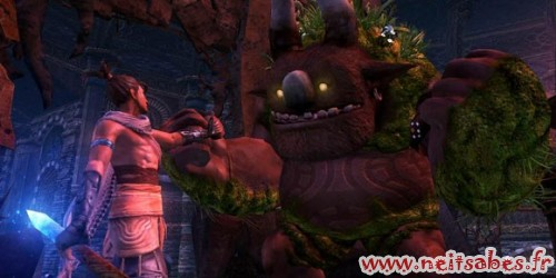 Test - Majin And The Forsaken Kingdom (PS3)