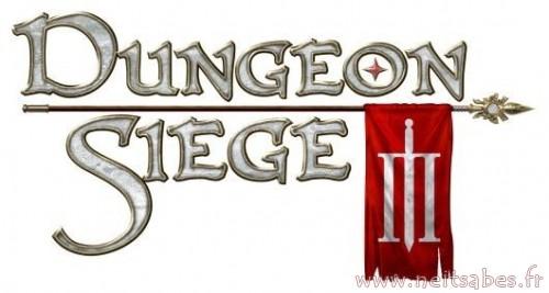 J'ai joué à Dungeon Siege III (PC / PS3 / Xbox 360).