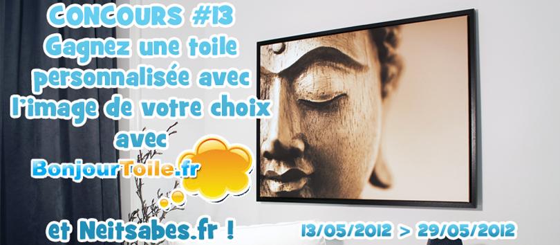 Concours #13 - Votre toile à l'image que vous voulez, avec BonjourToile !