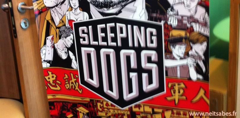 Mon avis sur Sleeping Dogs