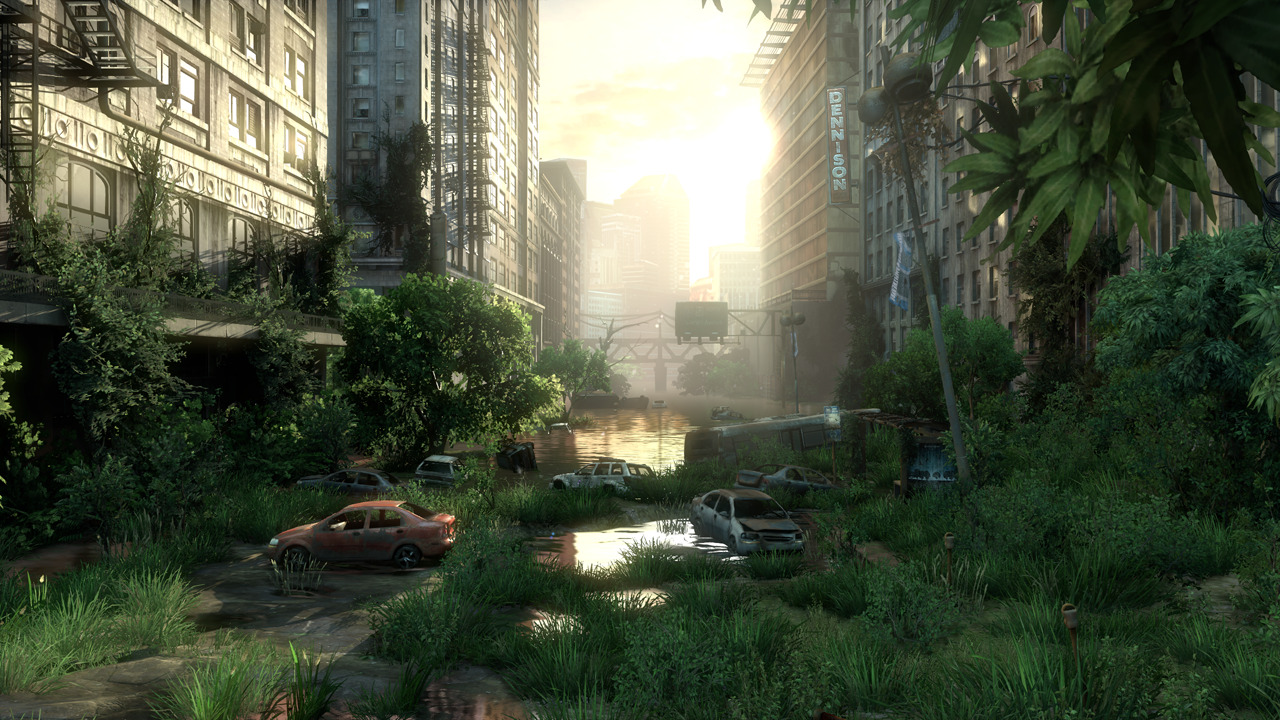 Test - The Last Of Us (PS3) (1)