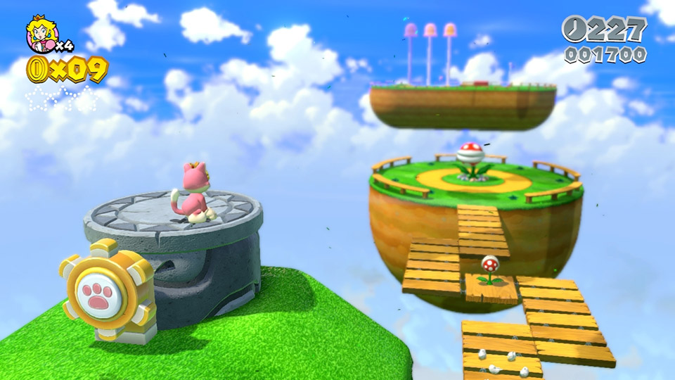 Test - Super Mario 3D World (Wii U) (5)